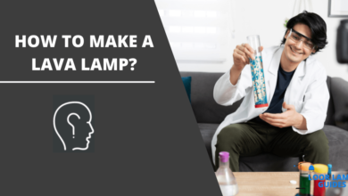 Photo of How to make a lava lamp?