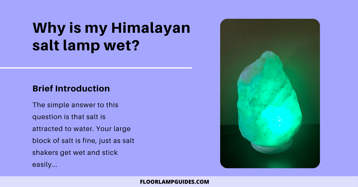 Why is my Himalayan salt lamp wet?